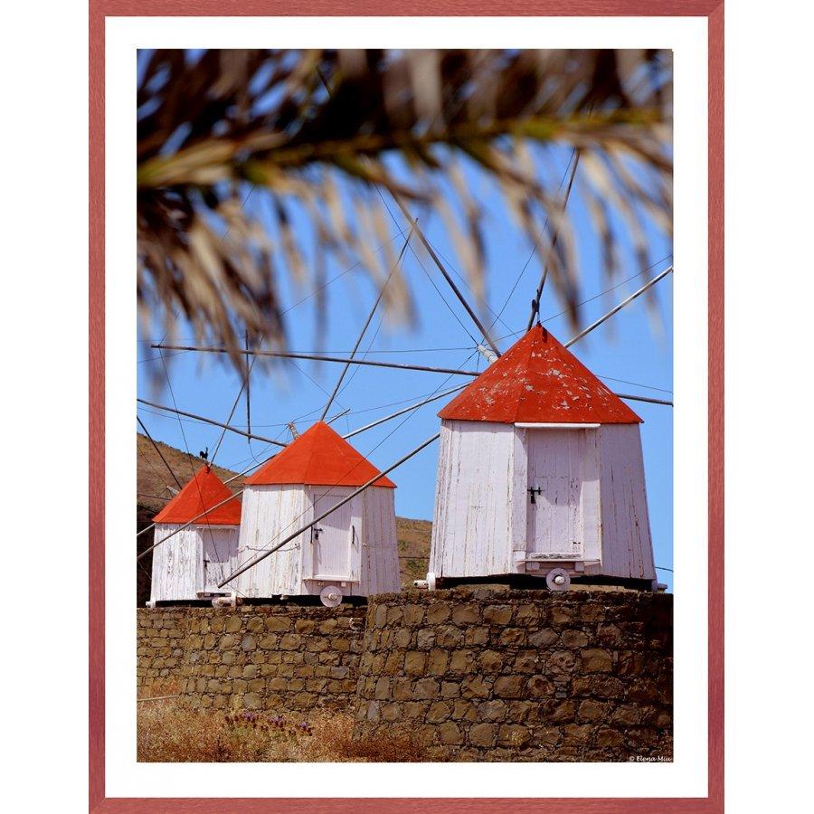 Tablou-vintage-mori-de-vant-Porto-Santo-Madeira