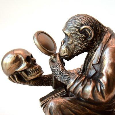 """Statueta bronz """"Maimuta, Evolutia"""""""