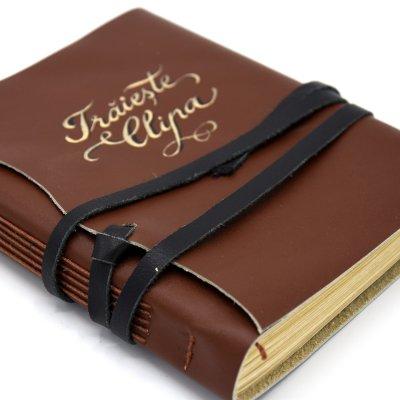jurnal-piele
